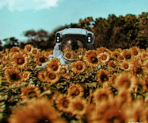 astronaut, background, and flowers image