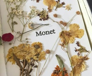 flowers, monet, and art image