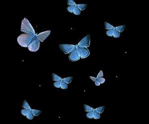 edit, overlay, and butterfly image