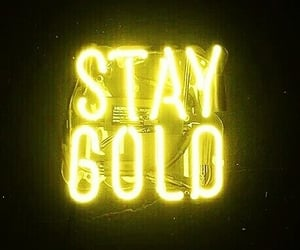 yellow, neon, and gold image