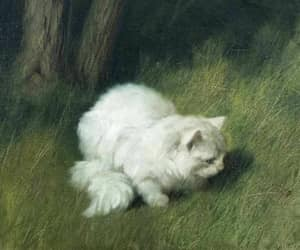 20th century, angora, and art image