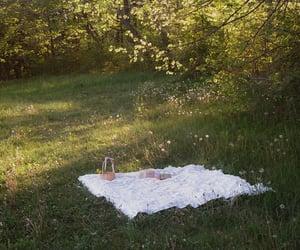 picnic, nature, and green image