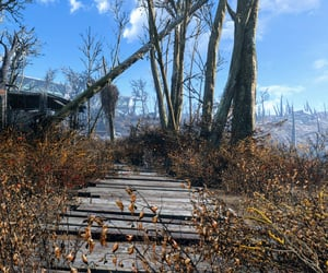 abandoned, leaves, and trees image