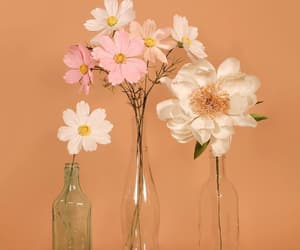 flowers, peach, and peachy image