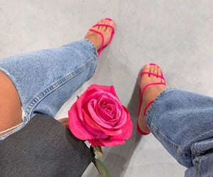 fashion and rose image