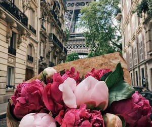 flowers, paris, and peonies image
