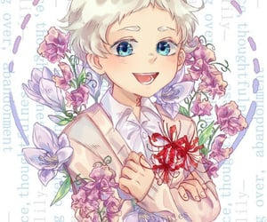 anime, flowers, and norman image