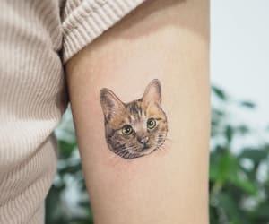 animals, cat, and tattoo image