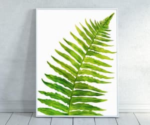 etsy, fern, and forest image