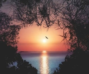 sunset, nature, and heart image