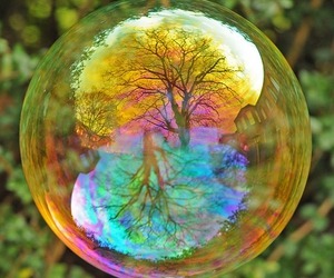 bubbles, tree, and nature image