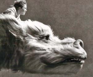dragon, The Neverending Story, and falkor image