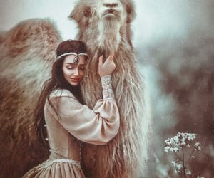 camel, fairytale, and girl image