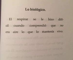 frases en español, ya no puedo, and ni quiero image