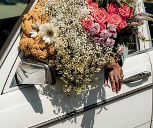 car, daisies, and flowers image