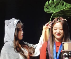 preview, gyuri, and hayoung image
