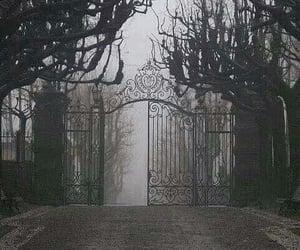 dark, black and white, and gate image