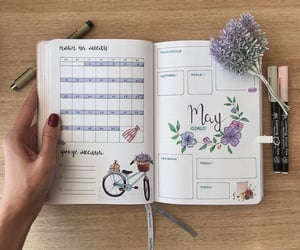 flowers, may, and plans image