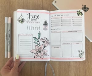 flowers, goals, and june image