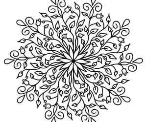 mandala and coloringbook image