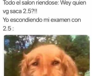 funny, gracioso, and memes en español image