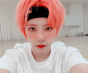 cat, gwsn, and k-pop image