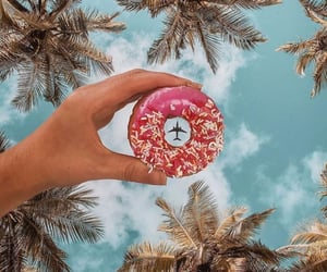 adventure, donuts, and nature image