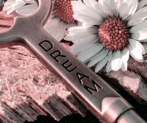 Dream, flowers, and key image