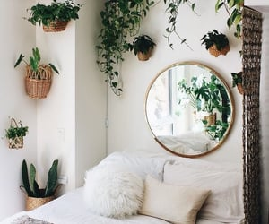 plants, bedroom, and home image