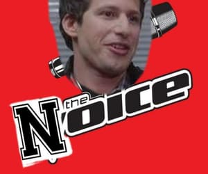 andy samberg, the voice, and tv show image