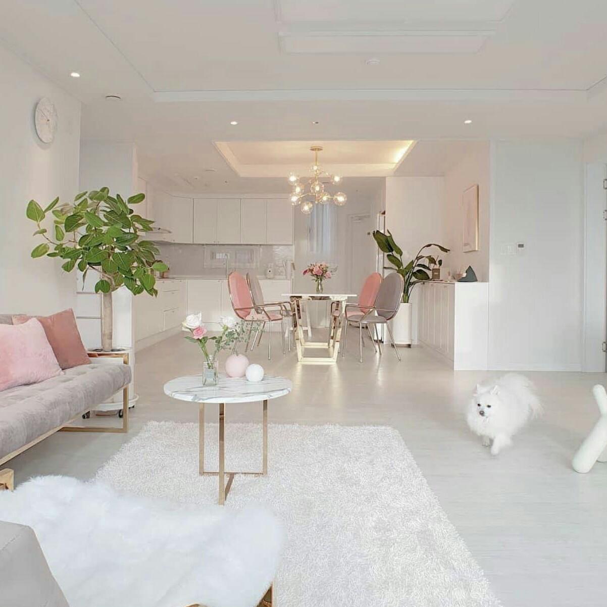 aesthetic, decoration, and dog image