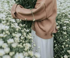 flowers, nature, and ًورد image
