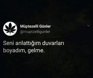 tumblr, türkçe, and söz image