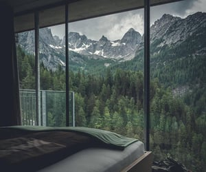 bed, forest, and trees image