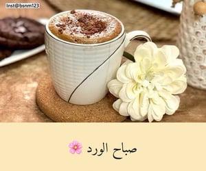 arabic, morning, and صباح الورد image