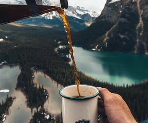 coffee, mountains, and forest image