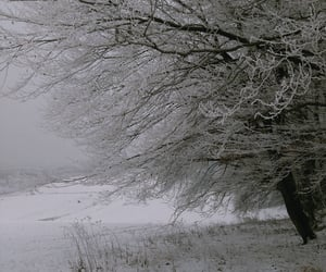 grey, landscape, and nature image