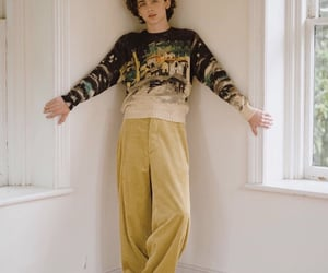 timothee chalamet, timothee, and boy image