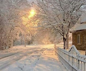 landscape, road, and winter image