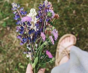 boho, cottage, and flowers image