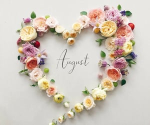 August, heart, and new image