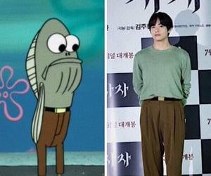 fish, funny, and humor image
