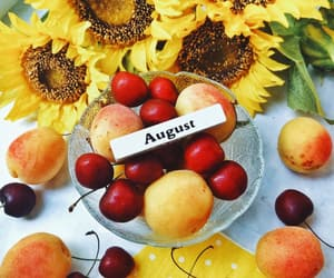 apricot, August, and cherry image