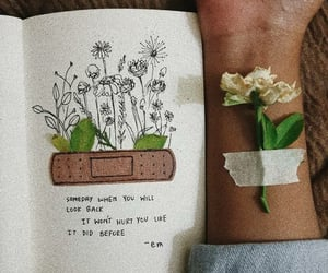 plants, quotes, and diary image