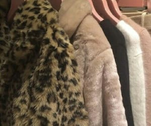 aesthetic, cheetah, and cozy image