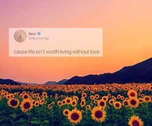 sunflowers, sunset, and vibe image
