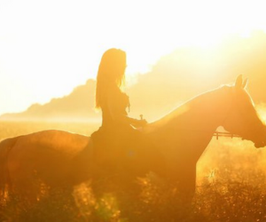 horse, girl, and photography image