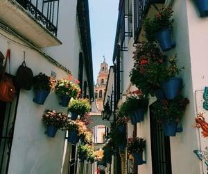 c1, Cordoba, and espana image
