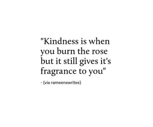 kind, quotes, and words image