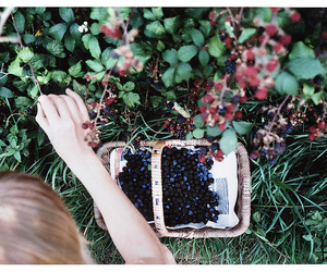 girl, berries, and vintage image